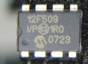 IMGP6306